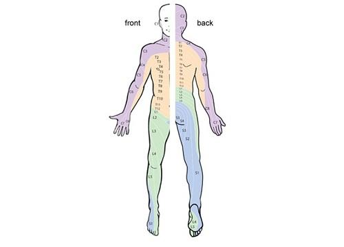 چرا به نوار عصب و عضله یا آزمایش NCS نیاز است؟